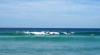 Banglentininkai Bondi paplūdimyje